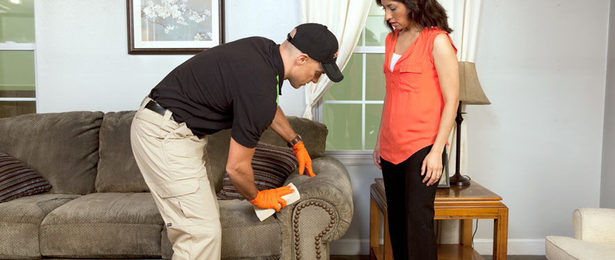 Broomfield, CO carpet upholstery cleaning