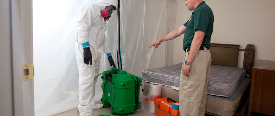 Broomfield, CO mold removal process